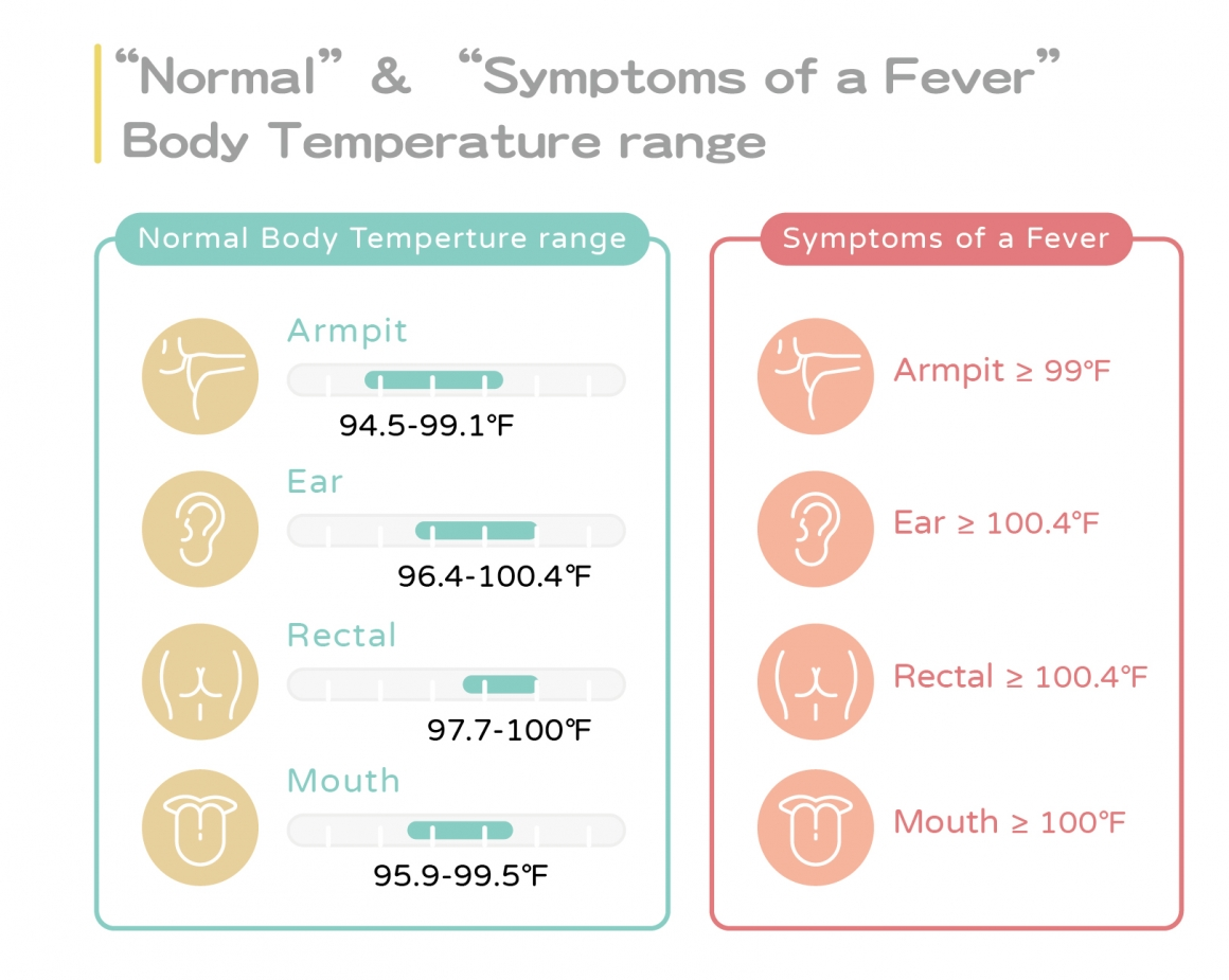 正常與發燒體溫範圍表-ENG
